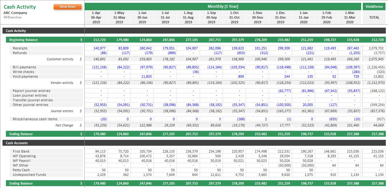 Cash Activity Report Example